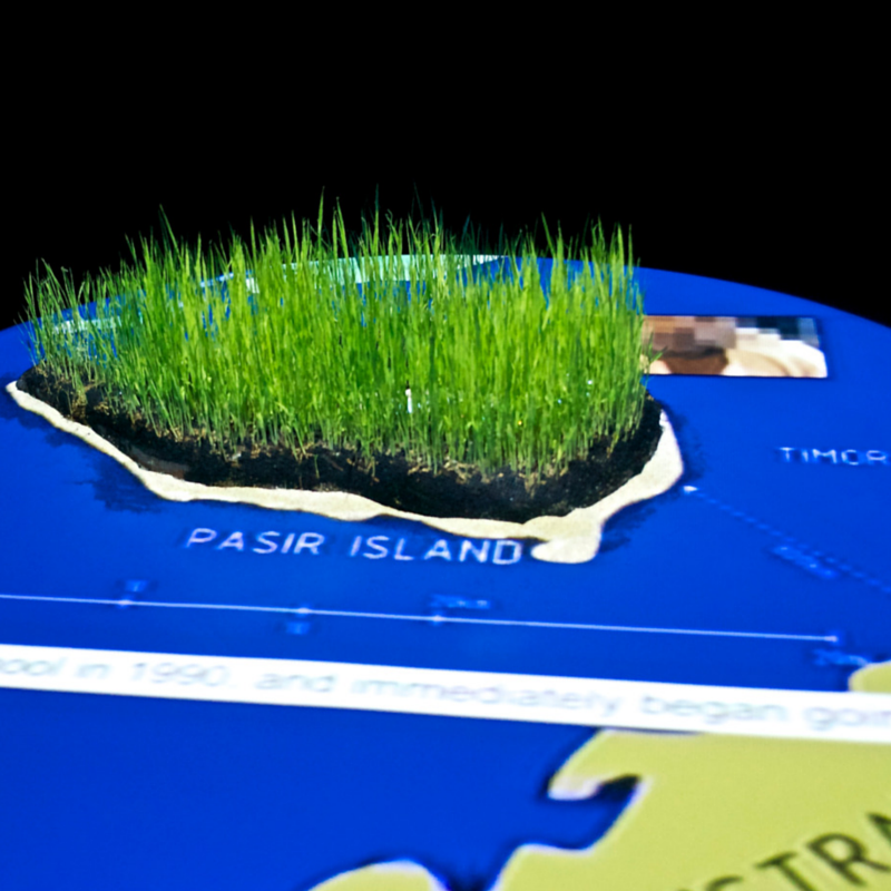 Krisna Murti - 'Tripang of Pasir Island' - Video installation (with paddy, soil and table)