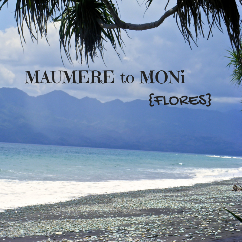 Maumere to Moni Flores Title Pic