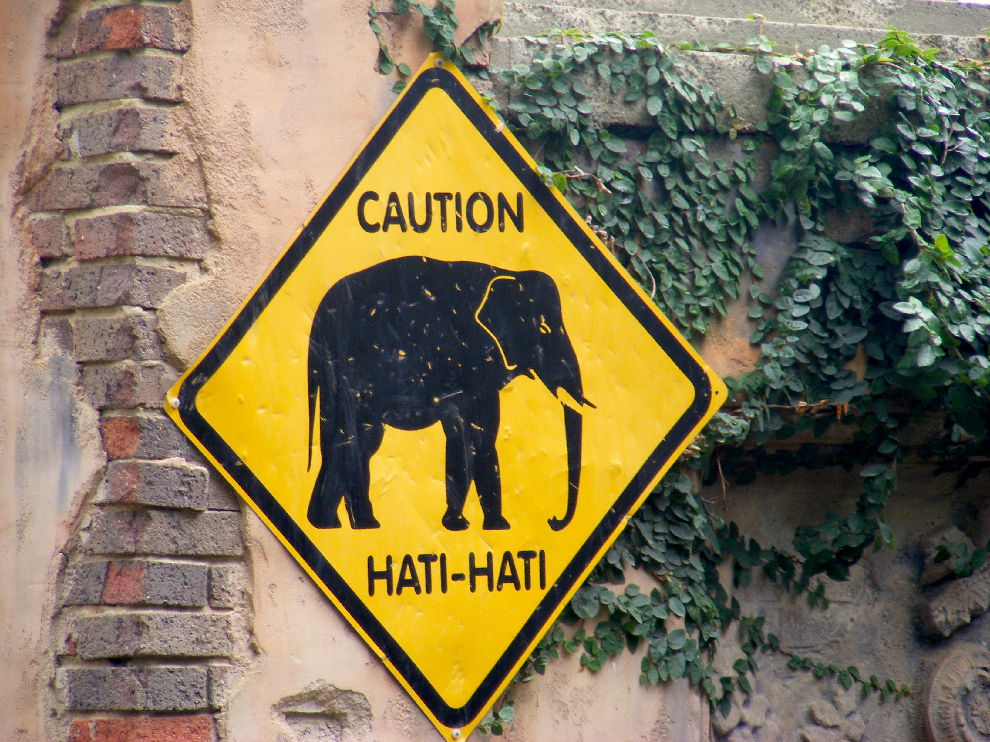 Caution Hati2 sign Melbourne Zoo