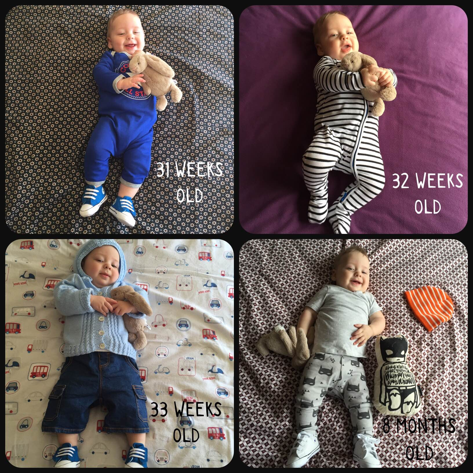 Updated 31 weeks to 8 months old collage